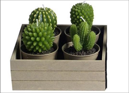 شموع غاية في الروعة Bougie-tendance-cactus-deco