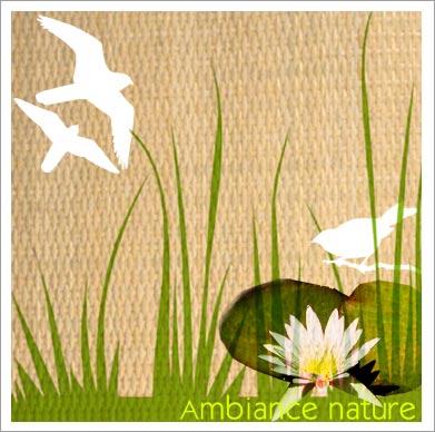 Pin Deco Nature Salon Et Ambiance Decoration On Pinterest